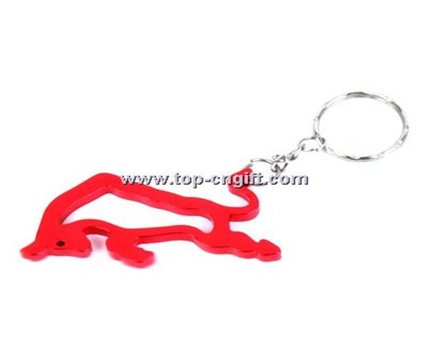 Bottle opener with keyring