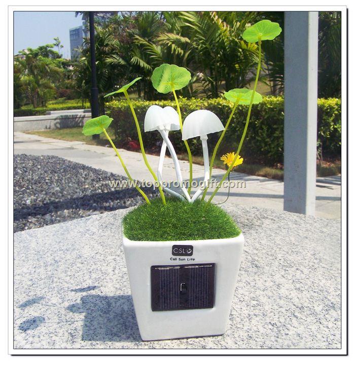 Solar Mushroom Lamp