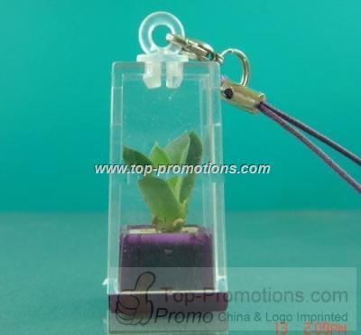 Mini plant keychain