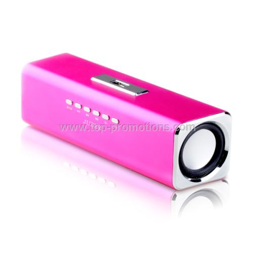 Portable Speaker with Multifunction Audio System