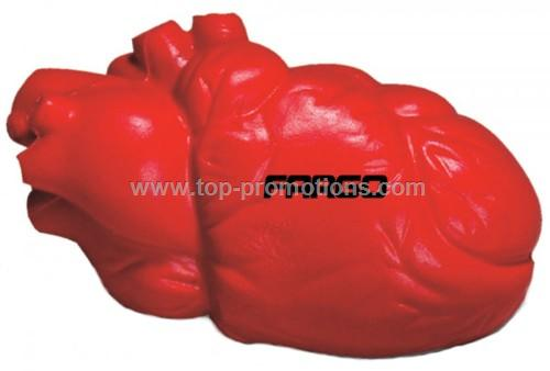 Anatomical Heart Stress Balls
