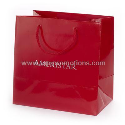 Gloss laminated Promo Paper Bag