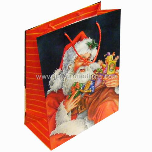 Holiday Paper Gift Bag