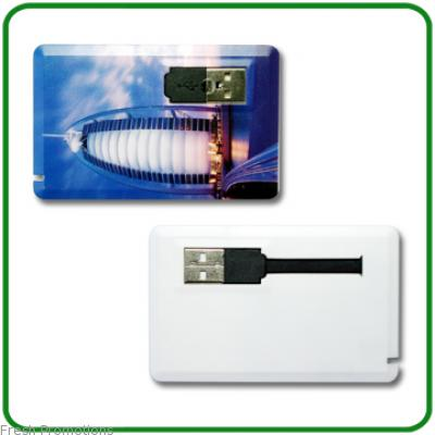 Photo Print Usb Cards