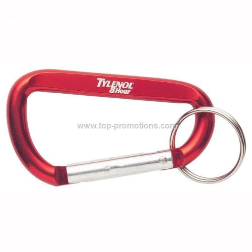 Carabiner Key Chain