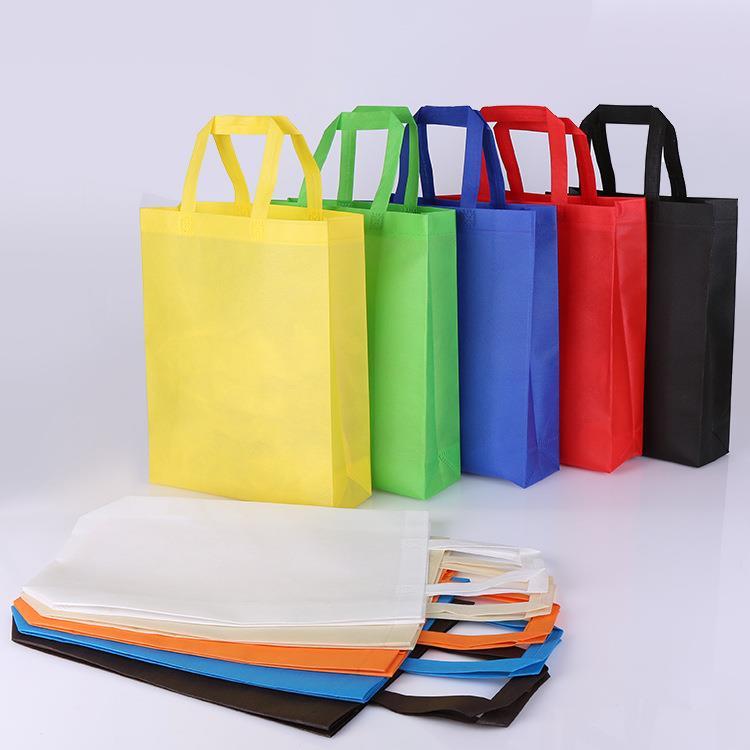 Professional Manufacturer Non-woven ECO Shopping Bag