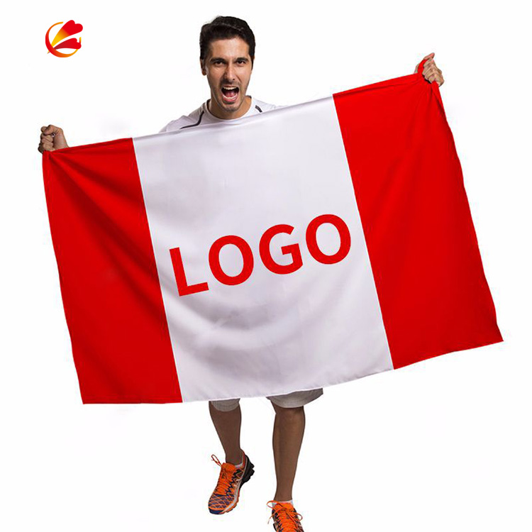 custom normal country flags 3x5 Logo Printing flag custom