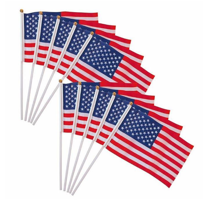 Custom Polyester Demonstration Hand Held Waving Flag